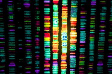 sequenza di DNA