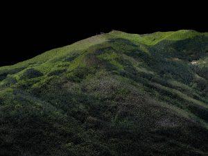 Ricostruzione tridimensionale di una nuvola di punti derivante da una scansione LiDAR (elaborazione Francesca Giannetti) - Riproduzione riservata Università di Firenze