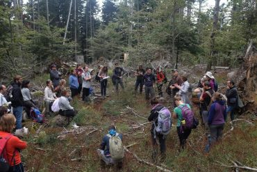 Foto - Corso internazionale sulle foreste a Vallombrosa