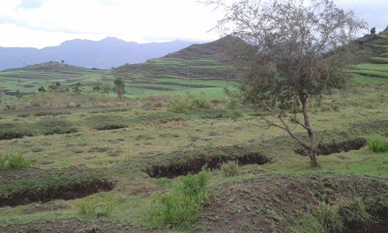 Trincee di infiltrazione per landscape restoration (Regione del Tigrè, Etiopia)
