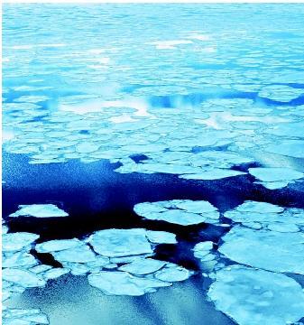 ghiaccio marino e polinia