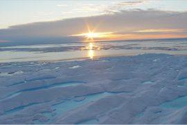 ghiaccio marino