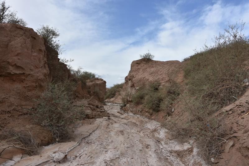 Lo wadi scavato da un corso d'acqua effimero alle porte del villaggio di Shahdad