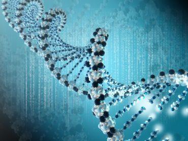 dna foto per La genomica al servizio della medicina personalizzata
