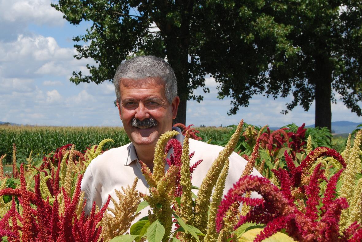 Paolo Casini