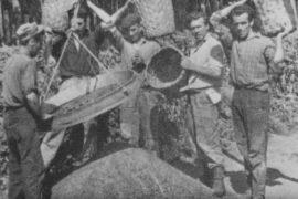 Carbonai - per gentile concessione dell'Ecomuseo del Carbonaio - Cetica (Arezzo)