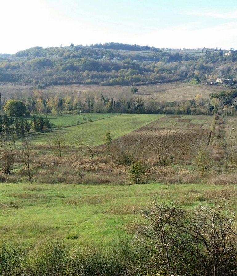 MoLTE_esperimento di agricoltura biologica a Montepaldi