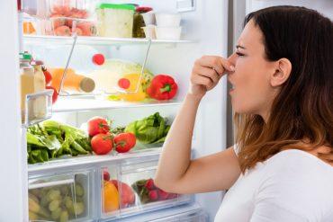 frigorifero maleodorante