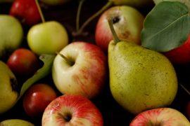 Biodiversità pere e mele