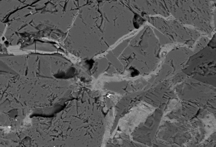 L'immagine ottenuta al microscopio elettronico a scansione: l'elgoresyite è contenuta nelle vene più chiare che tagliano la meteorite